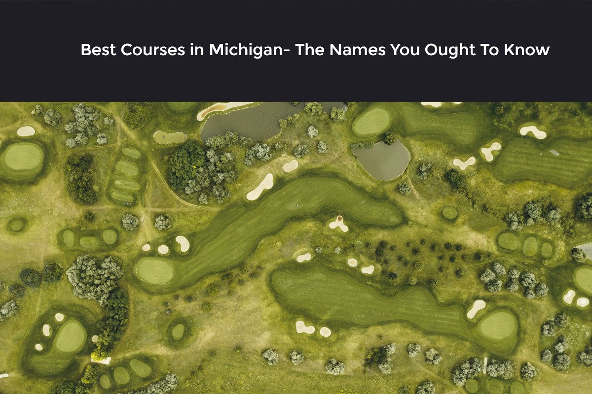 Best Courses in Michigan- The Names you ought to know