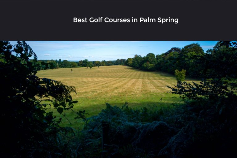 [ Top 8 ] Best Golf Courses In Palm Spring [ Read before you land In Palm Spring ]